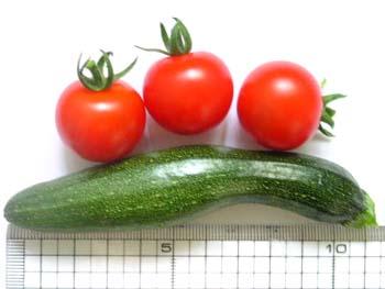 zucchini20080706.JPG